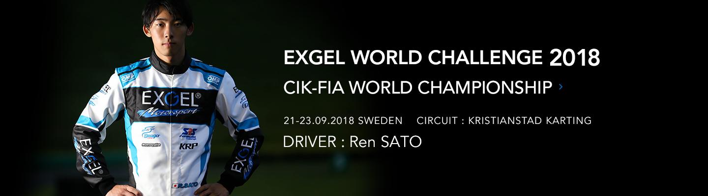 EXGEL WORLD CHALLENGE2018